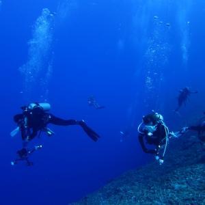 11月15日   久し振りにダイビングで・・・