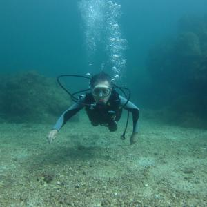 11月22日    ちょっと濁り気味の海でしたが・・・