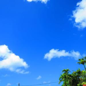1月20日  いいお天気です。