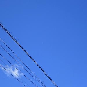 仙台上空に白い物体