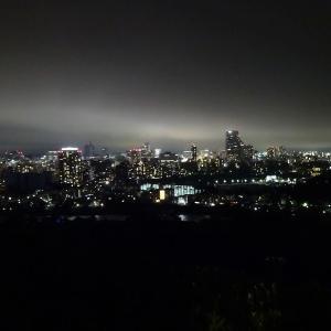 夜の青葉城(仙台城跡)- 2 一年ぶりに見る夜景