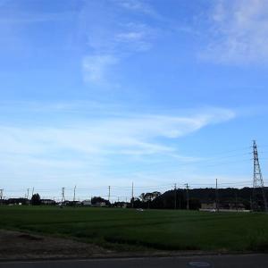 ようやく梅雨明け @仙台