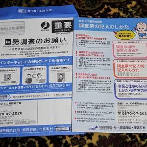 令和2年国勢調査(インターネット回答を利用)