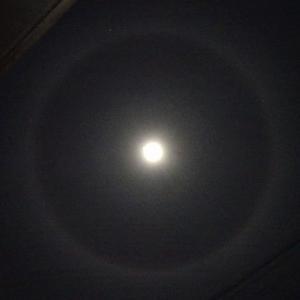 仙台上空に月暈(2020.12.29)