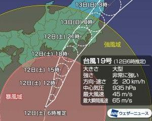 台風と向日葵