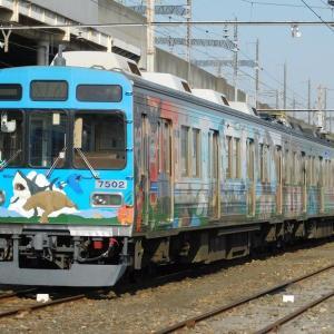 秩父鉄道を撮影