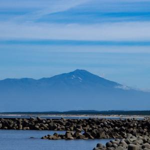 酒田方面撮影旅行 その8 世界一のクラゲの種類・数を誇る鶴岡市立加茂水族館に入場