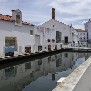 ポルトガルの旅 その38 コインブラ旧市街の街歩き⑦ ポルタジェン広場付近でランチ