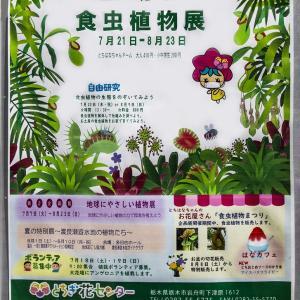 とちぎ路散策 その4 とちぎ花センターの「食虫植物展」①