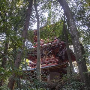 栃木市 岩船山高勝寺で初詣 その4 三重塔