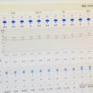 雨  オカンが明日帰って来るらしい