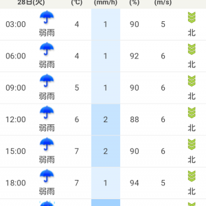 明日は雪なら通学は無理せず午後からにしますが、雪では無さそうです