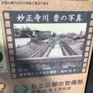 妙正寺池〜妙正寺川の橋を巡る(2)