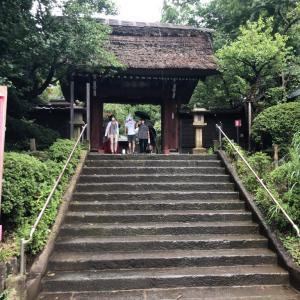 深大寺に久しぶりに参拝