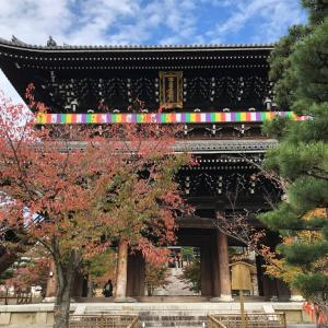 墓参り、そして三千院へ〜Goto関西旅行⑤