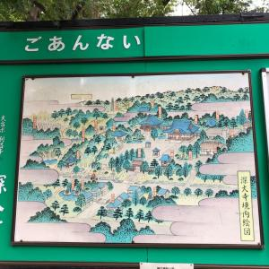 深大寺付近の坂②
