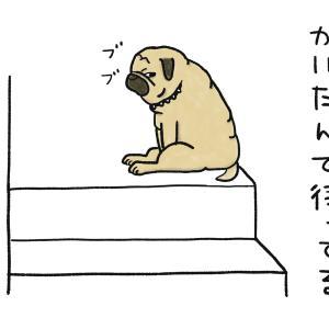 階段ムリ〜