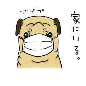 【自宅待機】