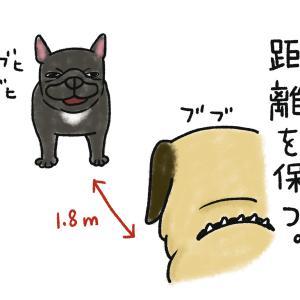 【社会的距離】