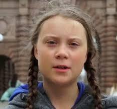 【悲報】国連気候行動サミットで演説、女子高生環境活動家グレタ・トゥーンベリが胡散臭いと話題に(; ・`д・´)www
