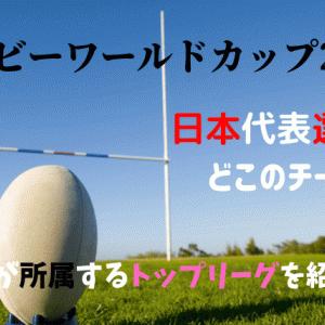 ラグビーワールドカップの日本代表選手はどこのチーム所属?トップリーグ紹介!