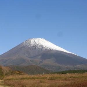 富士山見てから目立て