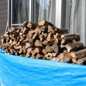 薪小屋がもうすぐ空くよ!