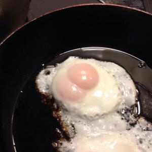 双子卵を割りました。 〜THE LOST GRAY MEMORY〜 スマホ版