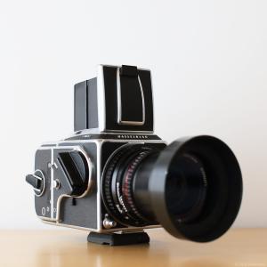 アサヒカメラフォトコンテストで初の「特選」