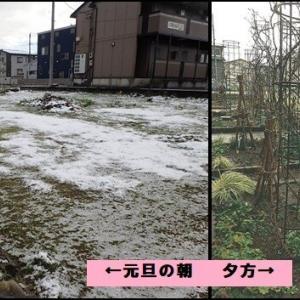 新年も波乱の予感?この天気・・・(チョッと俳句調?)
