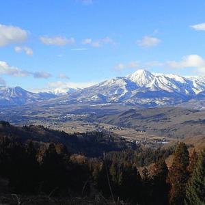 里山を歩いてみました、まるで3月のようです。