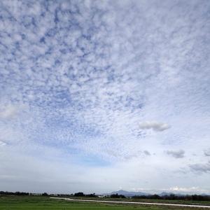 突然季節が変わった日?空いっぱいの秋雲