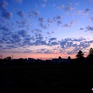 早朝ウオーキング・雲が美しい & ママコノシリヌグイ