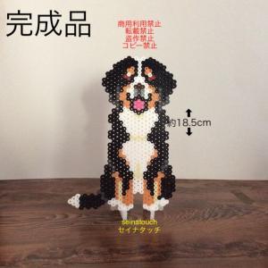 アイロンビーズ☆六角L結合+四角★犬猫のオブジェシリーズ バーニーズ、完成しました♪
