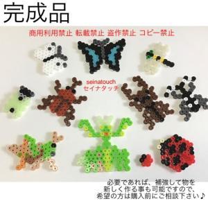 アイロンビーズ☆六角L★虫の図案 10種 カブトムシ クワガタ セミ トンボ 蝶々 他
