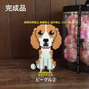 アイロンビーズ☆六角L結合★犬猫のオブジェシリーズ ビーグル②