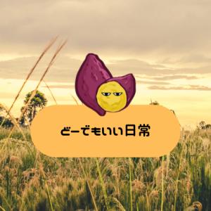 あわや事故る三歩前!!