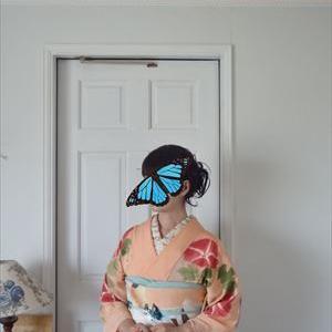 朝顔の着物と蝶の帯
