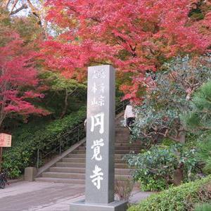 北鎌倉 円覚寺へ