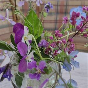 ブルー系の花