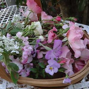 朝摘みの花たち