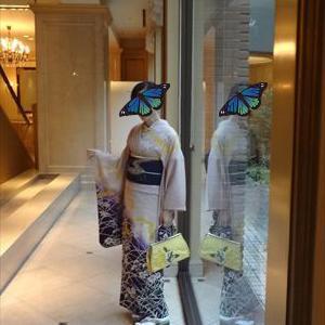 十五夜コーデ 兎の帯に女郎花と撫子の着物