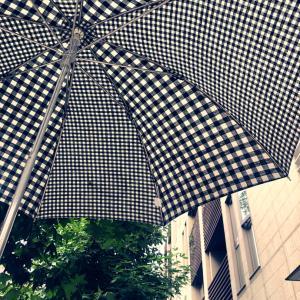 地下鉄に日傘を置き忘れる