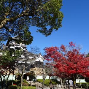 【旅行記】豊田参戦ついでにお城巡りをして来ました(2019/12/8)