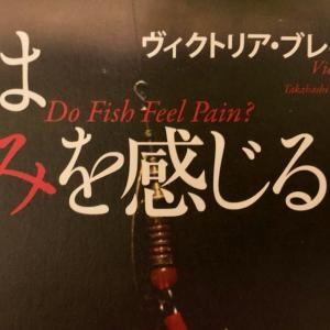魚は痛みを感じるか? 紀伊國屋書店