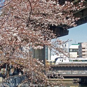 E353系(特急あずさ)~桜と神田川