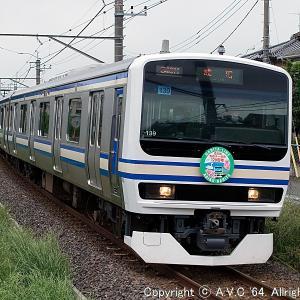E231系(成田線120周年記念HM)~疑似E217系