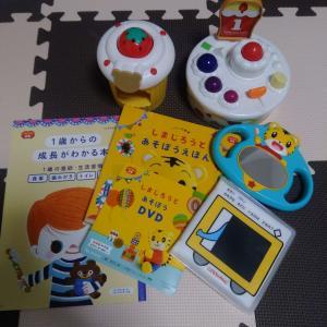 毎月約2000円!こどもちゃれんじbabyのおもちゃと絵本の感想