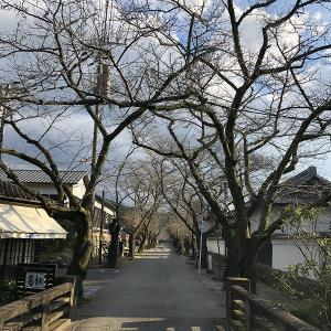 福岡県朝倉市の「秋月地区」
