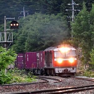 この日の最後、DF200-54号機牽引の貨物「2092レ」